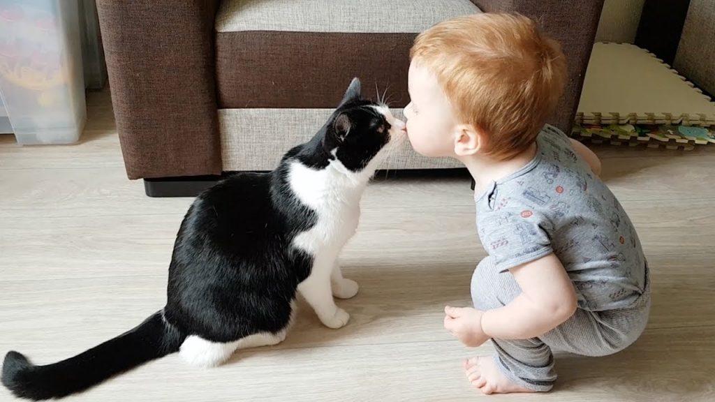 猫とチューするたびに大はしゃぎの赤ちゃんが可愛すぎる!見るだけでハッピーな気持ちになる映像