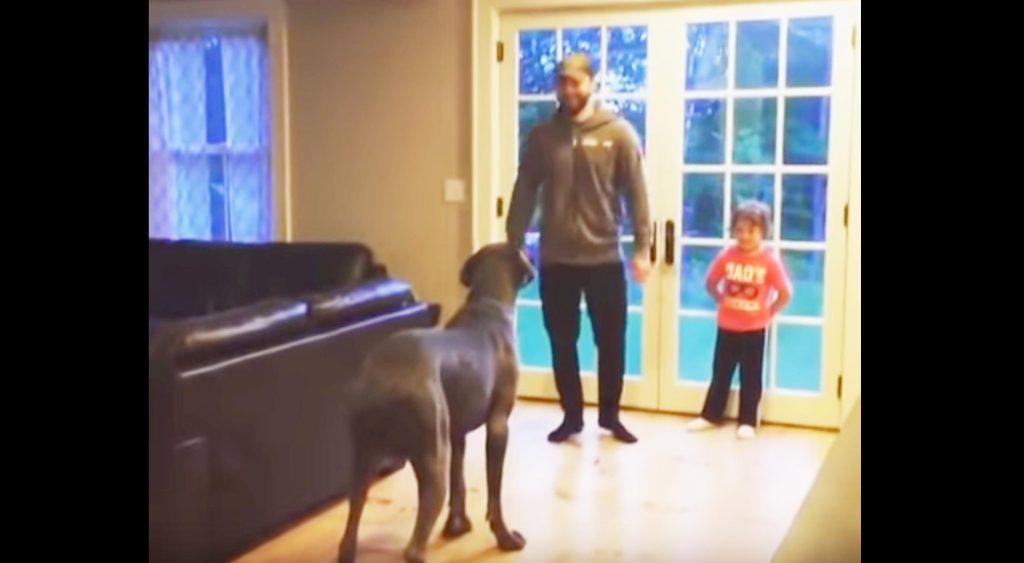 トレーニングをする飼い主さんを見て真似をする犬があまりにも可愛い!