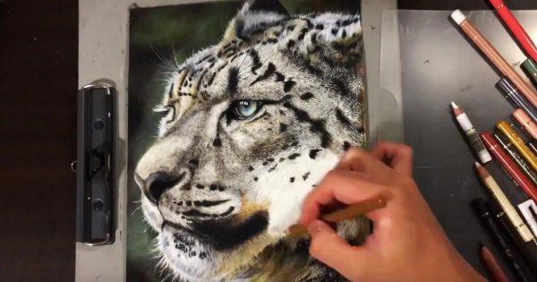 日本の高校2年生が、色鉛筆だけで描いた絵が写真にしか見えないと話題に!【メイキング動画あり】