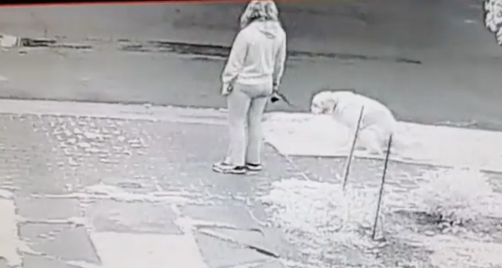 いつも家の前で犬にウンチをさせて拾わない飼い主に怒った家主が考えた「飼い主を辱める」対抗策が良いアイディアだと話題に!