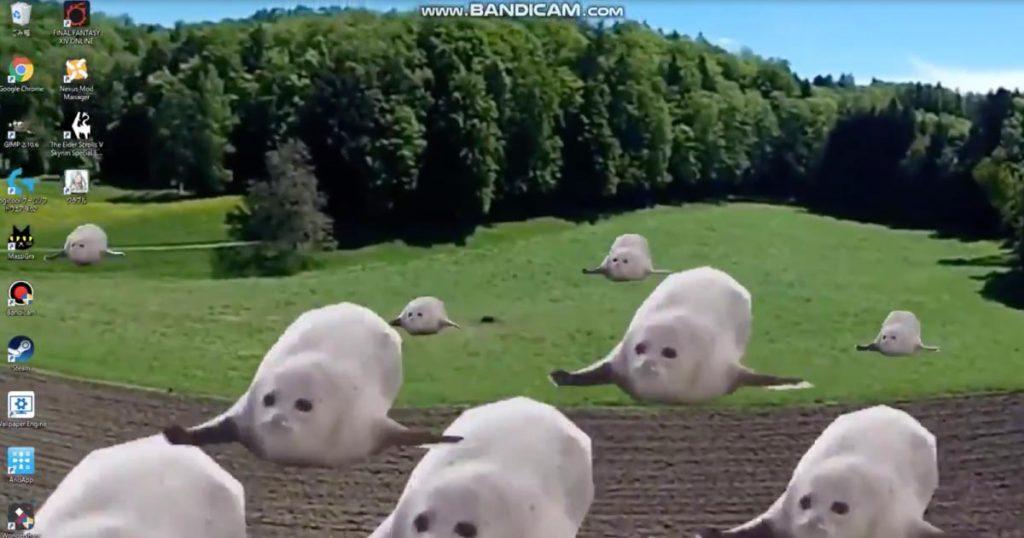 【爆笑】ネット購入した動画の「壁紙」の破壊力がヤバすぎたと話題に!何度も見てしまう笑