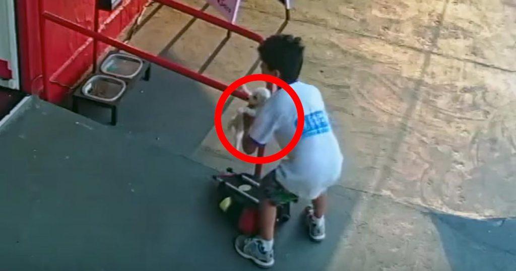バッグから一匹の捨て犬の子犬を取り出した少年。その優しい行動が拡散され、優しさが連鎖する!