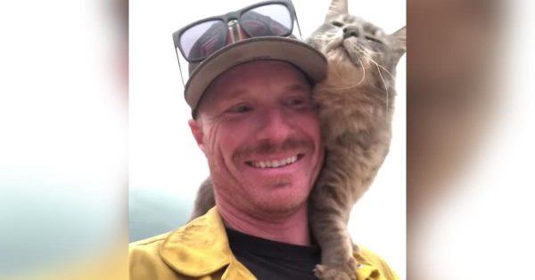 カリフォルニアの山火事で救助された猫。消防士さんにとても懐く様子が話題に!「これが私が税金を払う理由です」の声