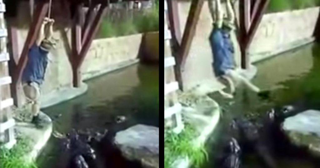 ワニだらけの池を飛び越えようとした男性が落下!「七面鳥の気持ちが分かった」