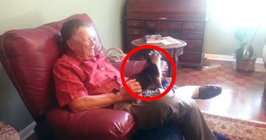 大好きなおじいさんの上では元気いっぱいなのに、嫌いな人に抱かれると死んだフリをする犬が可愛すぎる笑
