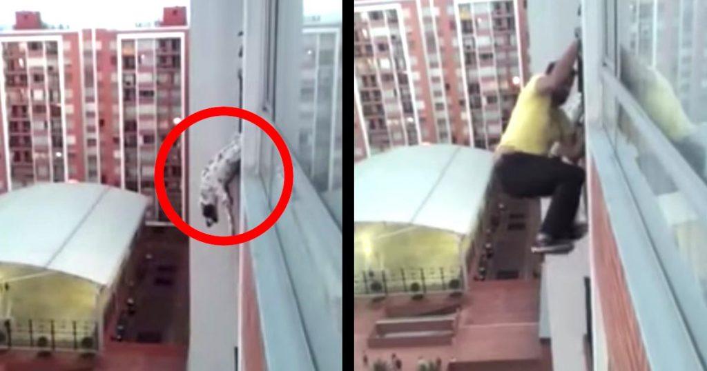 今にもビルから落ちそうになっていた犬。すると、階下からヒーローが現れた!