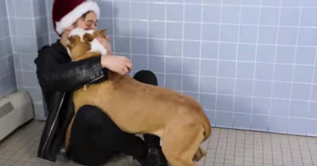 色々な犬に手品を見せてみた反応が可愛すぎる!動物シェルターの「犬らしさを引き出した瞬間」を撮影する試みが話題に!