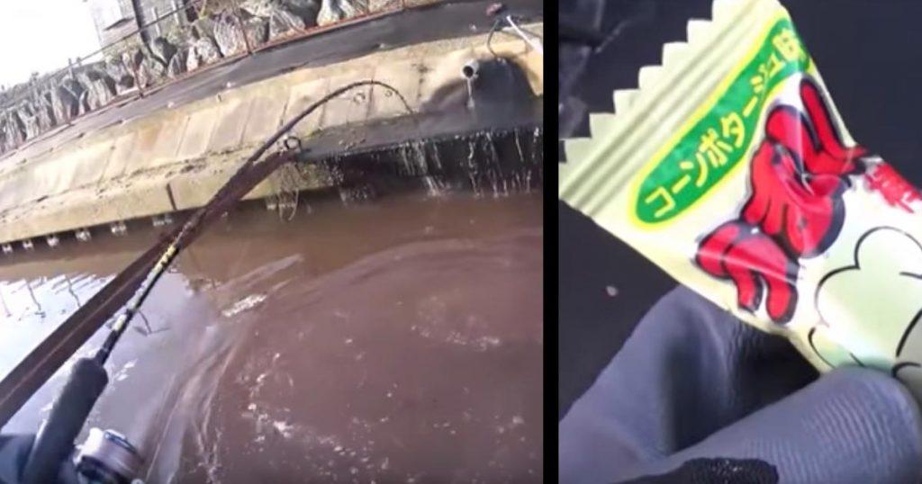 一見、魚なんて住めなさそうな赤く汚染されたドブ川で「うまい棒」をエサに釣りをしてみたら、超大物が釣れた!