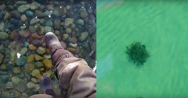 圧倒的な透明度!湖底まで丸見えなほど澄んだ世界一深いバイカル湖の氷の上を歩くと、空中散歩のようで浮遊感が凄いと話題に!