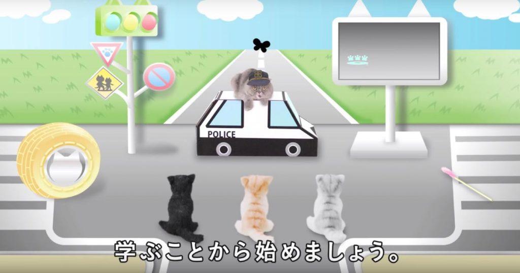 ぜひ愛猫に見せて欲しい!猫語でナレーションが付いた、猫専用の交通安全ビデオが凄い!