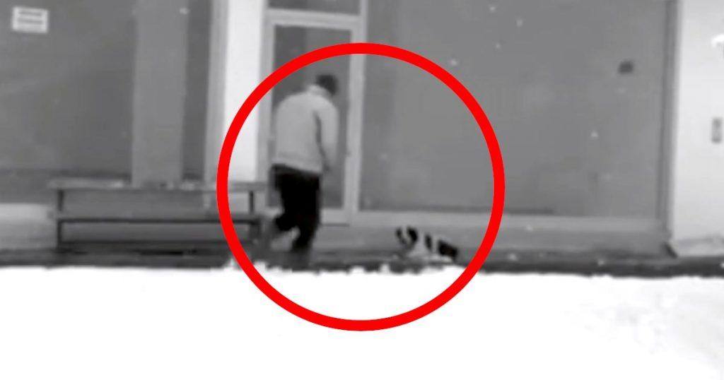 「男の中の男だ!」雪の中、外で寒そうにする野良犬に近づく男性。監視カメラに映った男性のイケメンすぎる行動に賞賛の声!