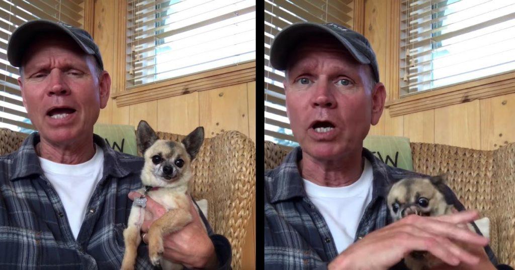 【爆笑】ドヤ顔で犬によるリラックス効果を解説する男性。しかし、チワワのリラックスとは程遠い反応が面白すぎる笑