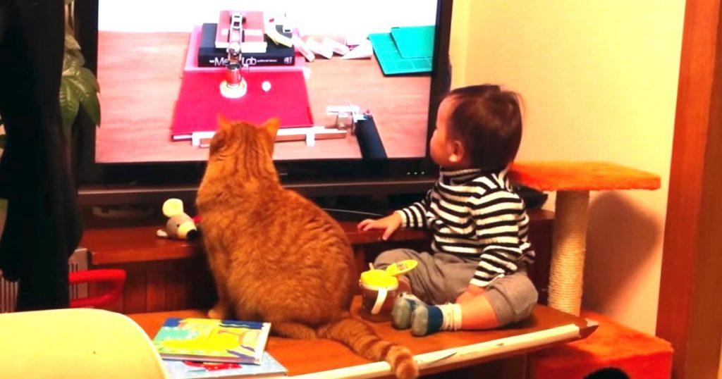 息ぴったり!「ピタゴラスイッチ」を観ていた赤ちゃんと猫。最後に驚異のシンクロ率で振り向く姿が可愛すぎる!