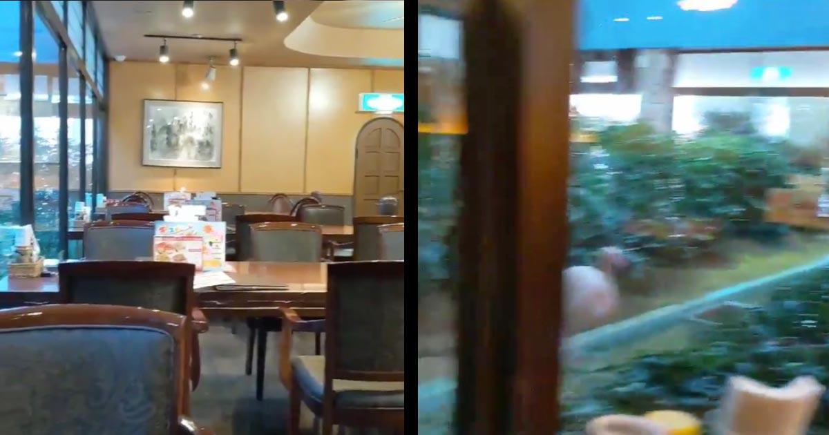 茨城のファミレスで撮影された光景が凄いと話題に!カメラがパンするとびっくり!!