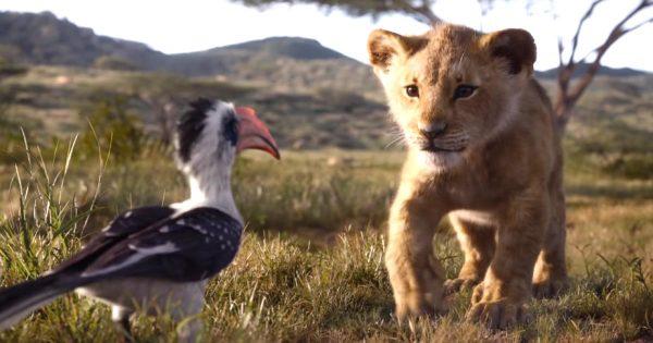 【鳥肌】ライオン・キング「超実写版」の最新予告編が公開!本物の動物が出演しているようにしか見えないクオリティに鳥肌!