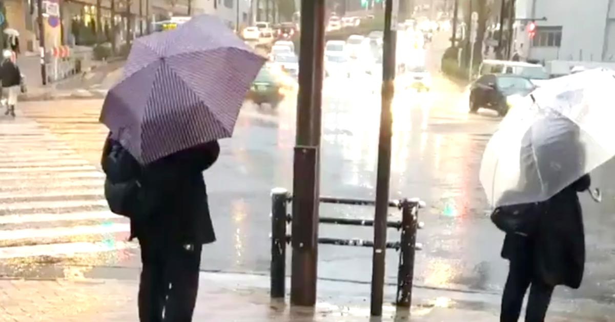 「線香花火」と題された雨の中撮影された動画の感性が素晴らしいと話題に!切り取り方一つで世界はこんなにも美しい!