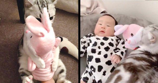 「これは僕のです〜!」猫が赤ちゃんの頃使っていたパペット人形を息子さんにあげたら、猫が可愛すぎる行動に出て話題に!