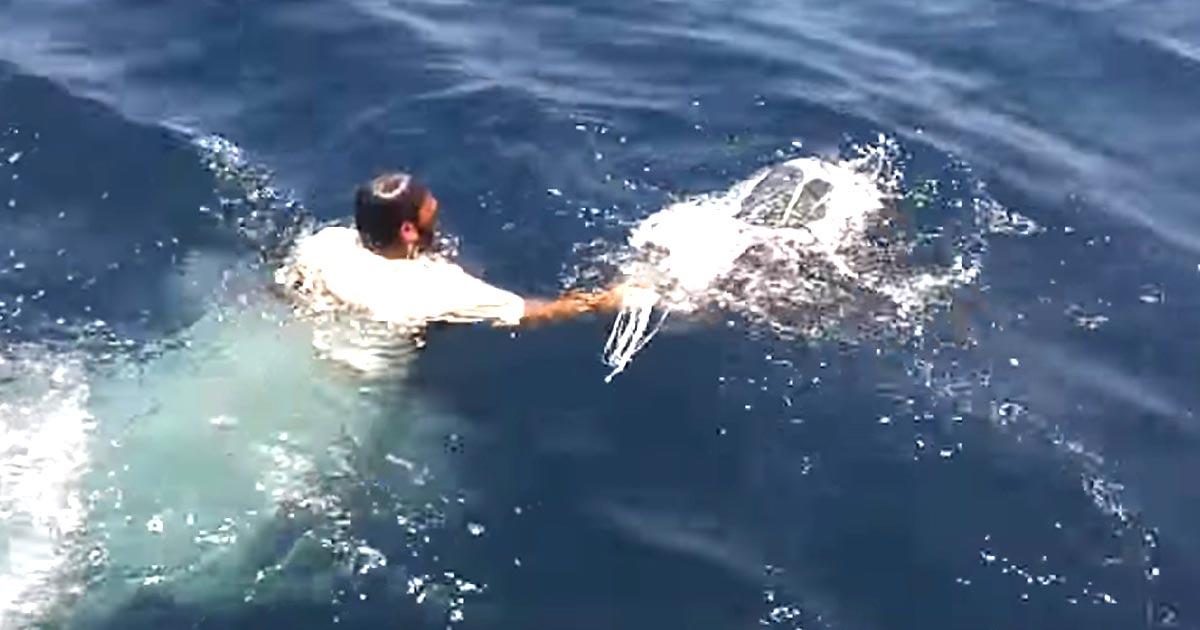 海面に漂う白い袋。異変に気づいた男性はすぐに海に飛び込んだ!