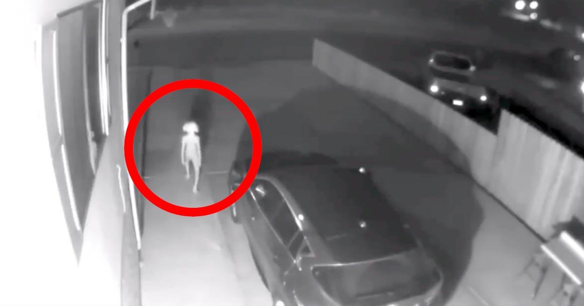 自宅の防犯カメラに、人間とは思えない奇妙な動きをする「二足歩行生物」が映って世界中で話題に!