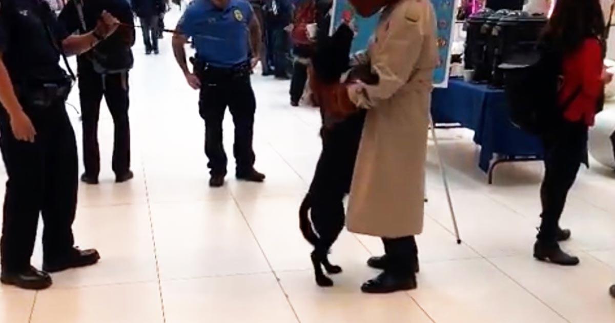 警察犬が「ヒーロー」に出会った時に見せた反応が可愛すぎると話題に!