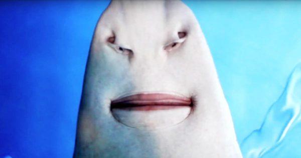 【動画】ノコギリエイを下から見たらエイリアンの顔みたいでヤバすぎたと話題に!唇の動きが人間みたい!