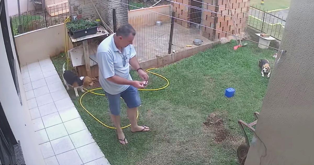 ゴキブリの巣穴にガソリンを流し込み退治しようとした男性。庭がひっくり返るほどヤバいことになってしまい話題に!