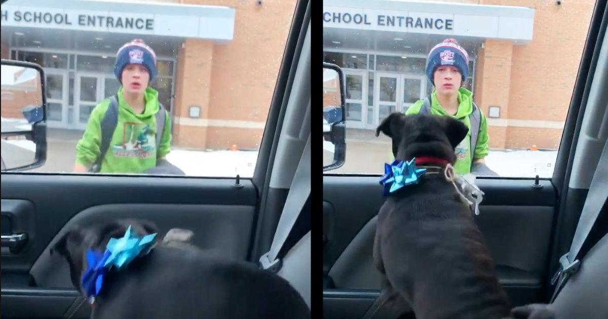 「最高のクリスマスプレゼント」行方不明になり二度と会えないと思っていた最愛の犬とサプライズ再会した少年の反応が世界中で話題に!