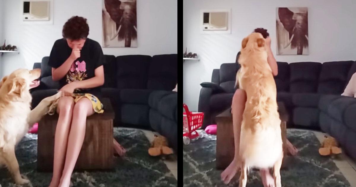 パニック発作を起こした自閉症の飼い主さんに気づいた犬の行動が素晴らしいと話題に!