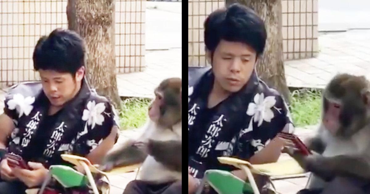 外国人「え?!日本人って猿と会話できんの?!」スマホを見て仲良く休憩する猿と人のあまりにも自然なコミュニケーションに驚きの声!