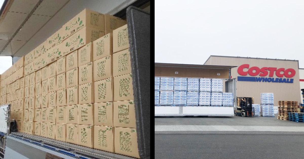 メディアが「売り切れた棚」の映像を流すと更に買い占めを煽る。関係者がトイレットペーパーの豊富な在庫を示す写真を続々投稿!