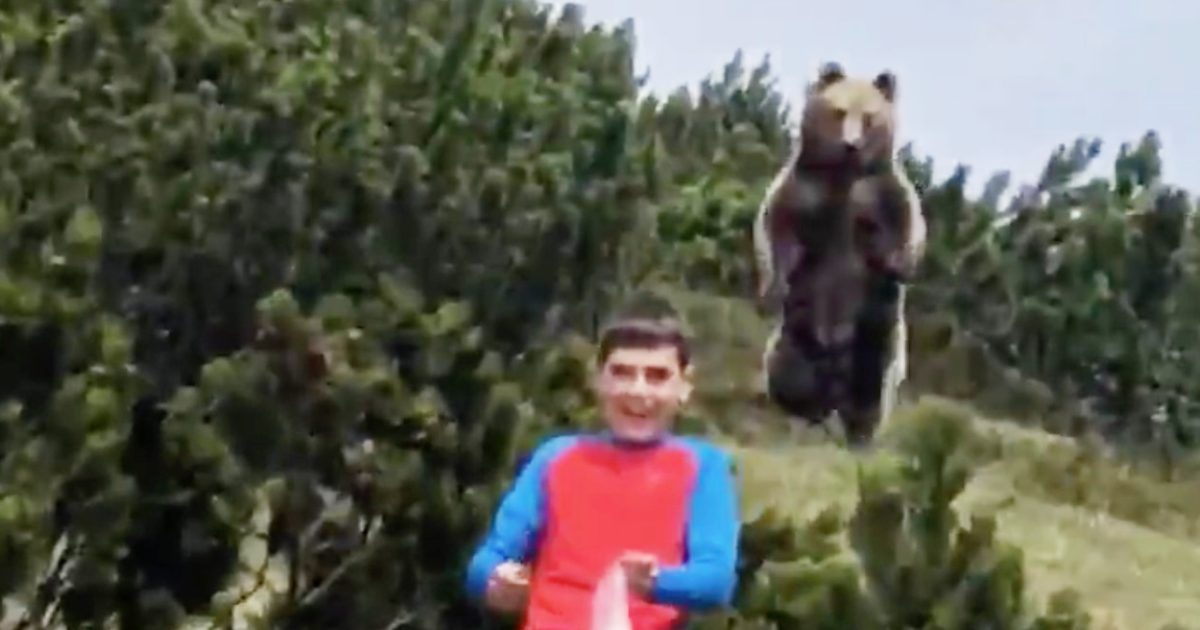 【緊迫】家族でハイキングをしていた少年に巨大なヒグマが付いてきてしまい話題に!YouTubeが少年を救う!