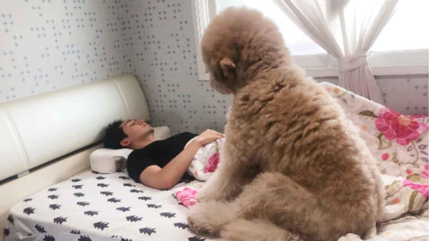 羨ましすぎ!飼い主さんが知らなかった、毎朝犬がやっていた行動が可愛すぎたと話題に!
