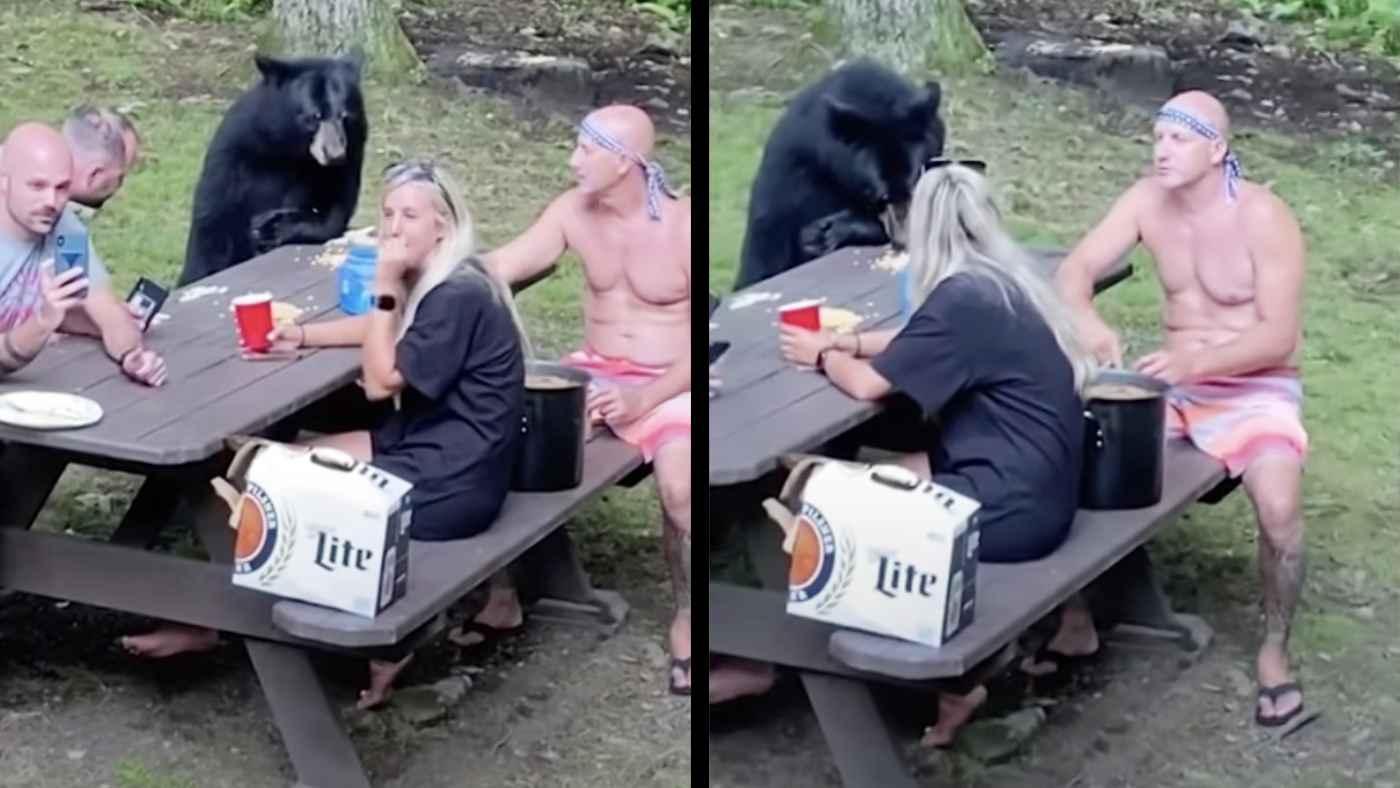 野生の熊と落ち着いてピクニックを満喫する肝が座りすぎている家族が話題に!