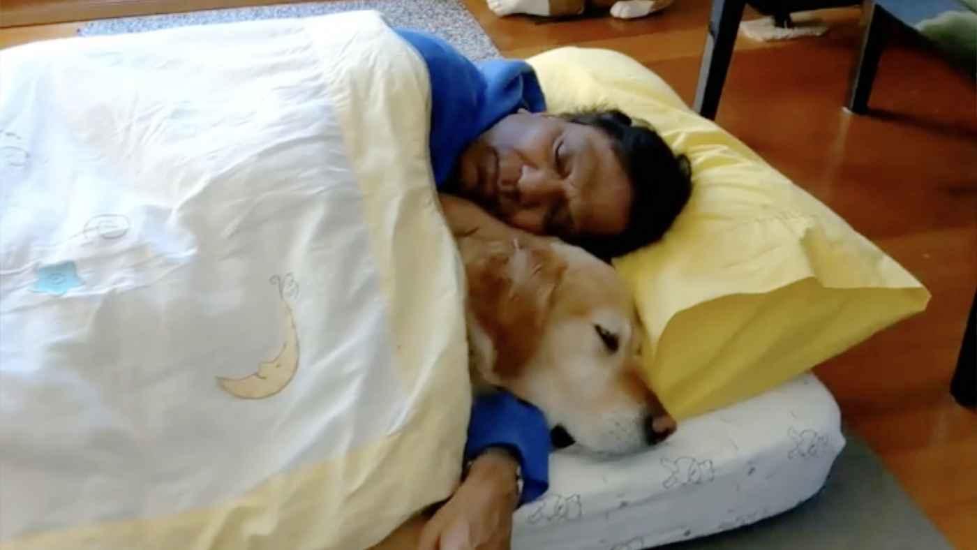犬を飼うことに大反対だった父親。しかし犬が病気になった夜、父親は一晩中犬を抱きしめていた