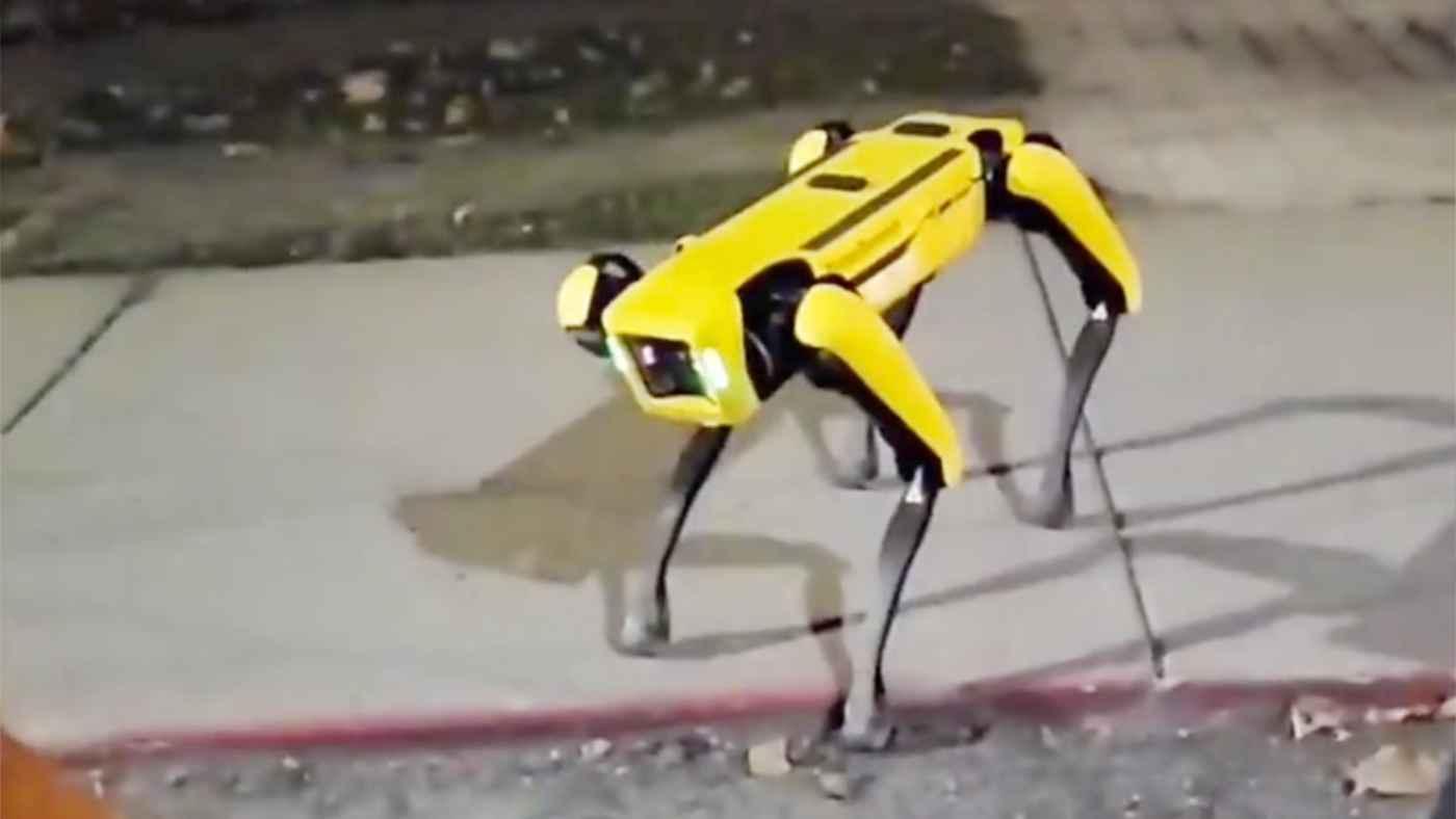 野良ロボット犬が路上を歩いていて話題に!