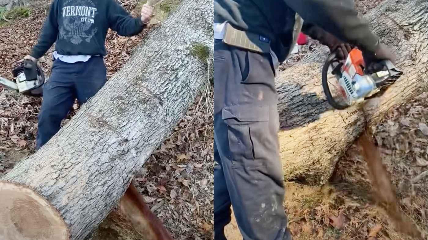 「現実なのか?!」木を切ったら、とんでもない量の水が吹き出てきて話題に!