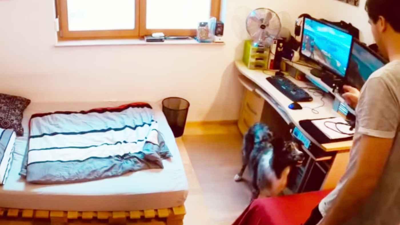 【天才】飼い主さんが部屋から出ても「待て」をちゃんとできるか試したら、犬の方が一枚上手だった!