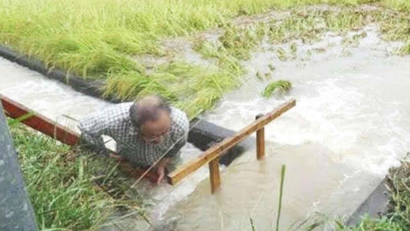 「老害と言わないで」お年寄りは大雨の中なぜ田んぼの様子を見に行ってしまうのか、切実な事情を綴った投稿が話題に!