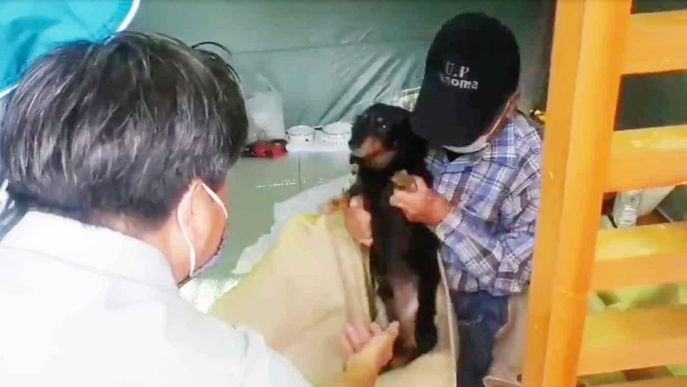 「ペットも家族」岡山県・総社市の避難所が素晴らしいと話題に!