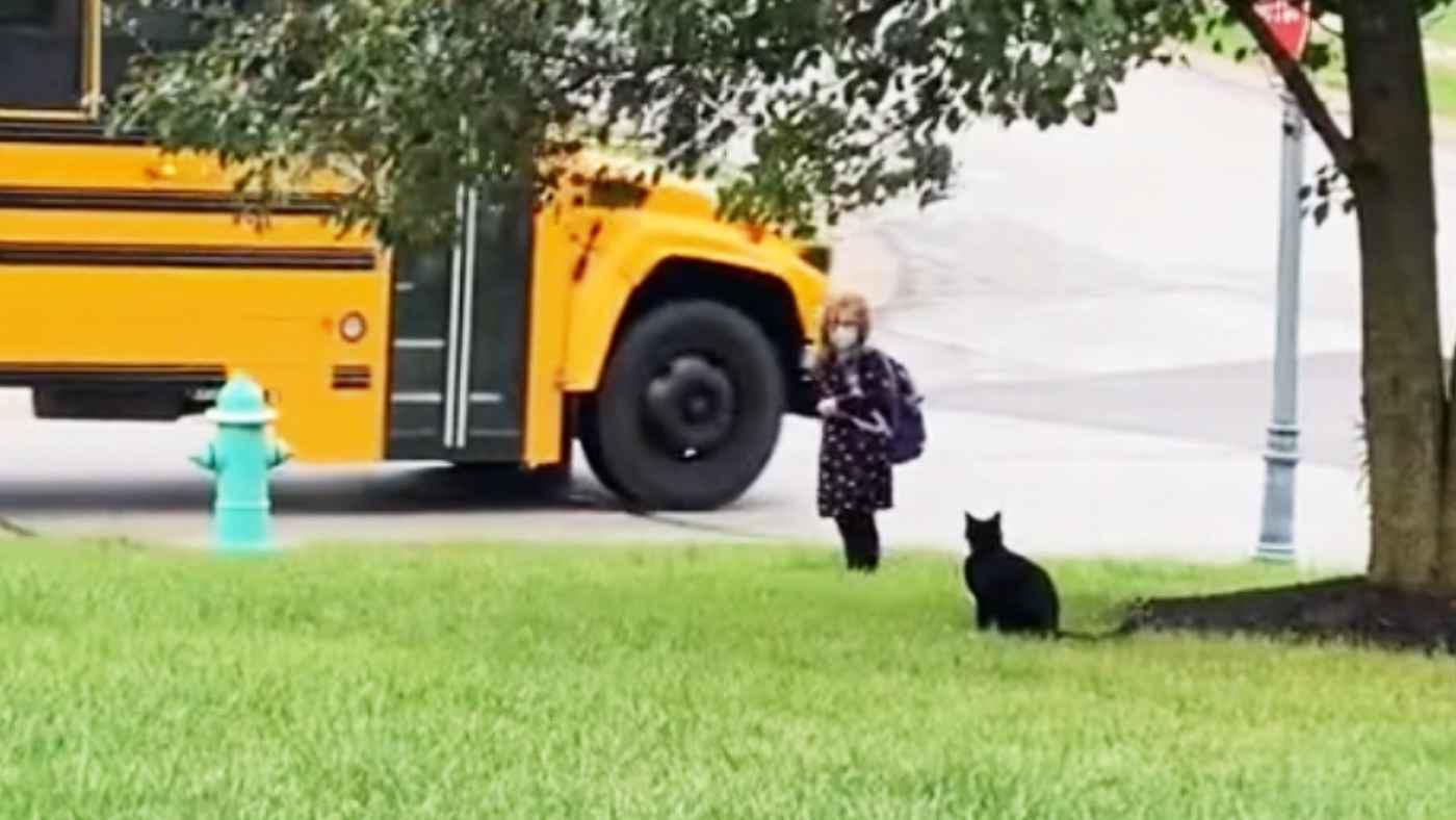 保護猫が毎朝の日課にしている行動がイケメンすぎると話題に!